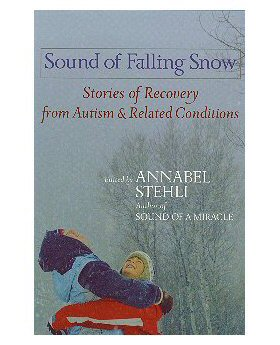 Sound of Falling Snow book cover